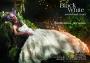Black  White - свадебный салон